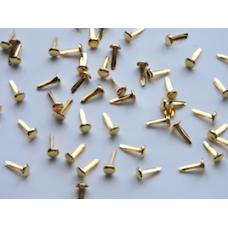 8mm Gold Polished Brads